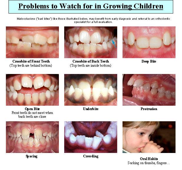 Orthodontic Dental Office